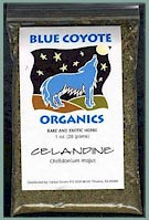 Buy Blue Coyote Organic Celendine