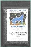 Buy Blue Coyote Organic Lavender Herb