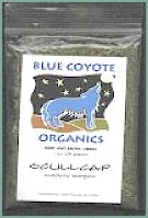 Buy Blue Coyote Scullcap Organics at Find Herb